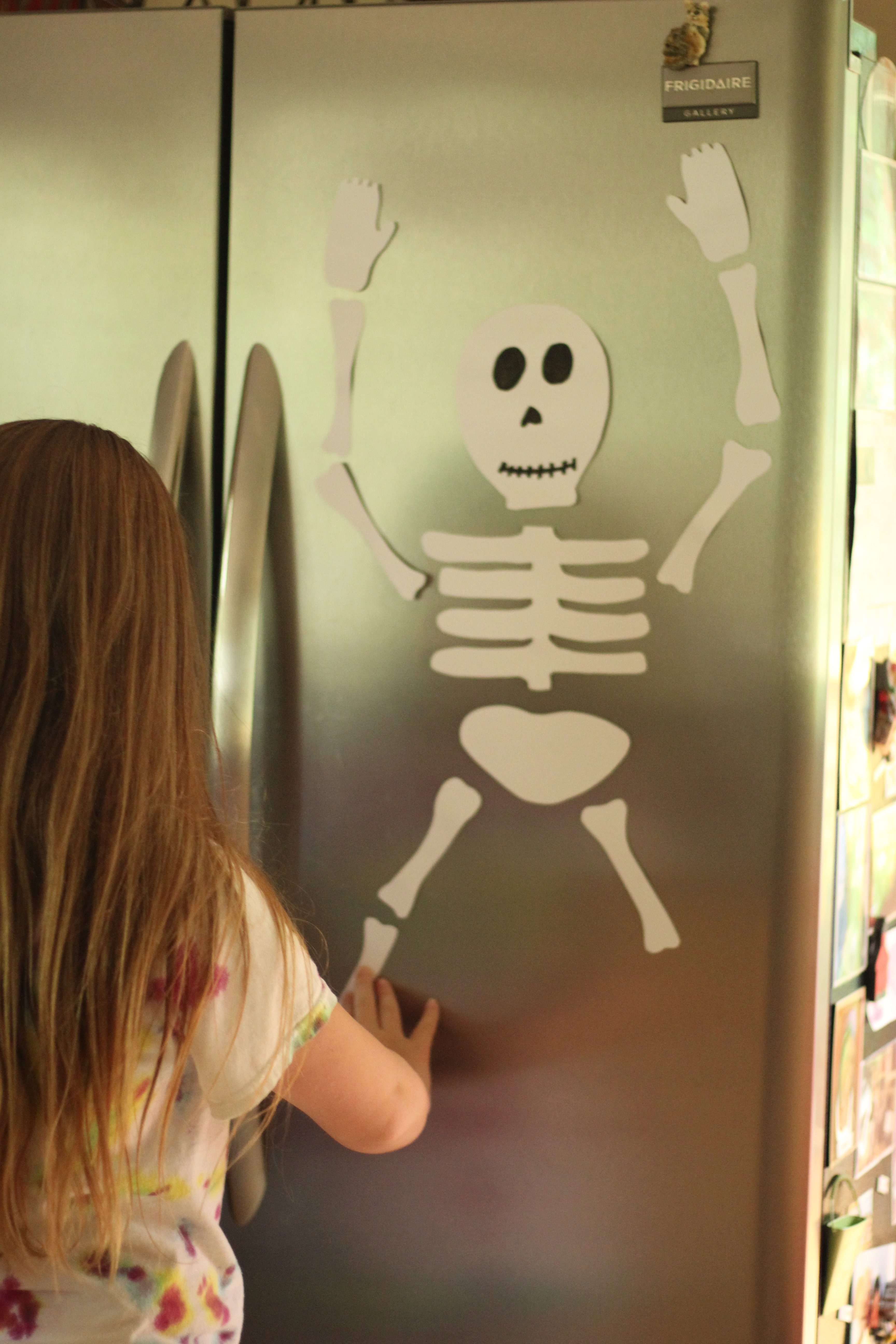 skeleton-8